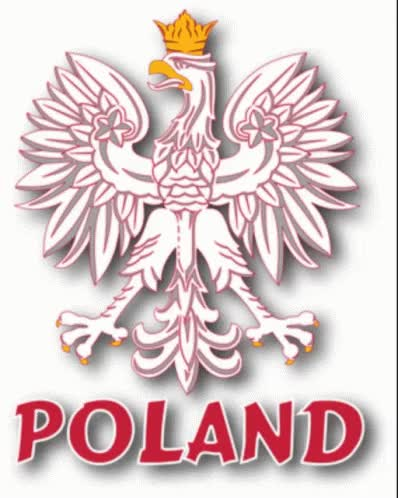 Watch and share Polish GIFs on Gfycat