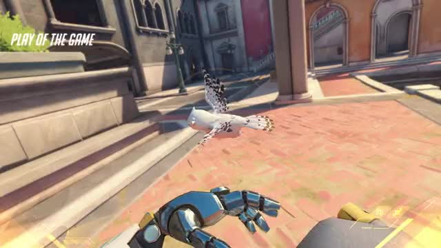 Watch and share Overwatch GIFs and Bastion GIFs by mjshadow on Gfycat