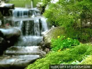 Watch and share Stream GIFs on Gfycat