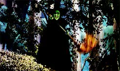 Watch and share Margaret Hamilton GIFs and The Wizard Of Oz GIFs on Gfycat
