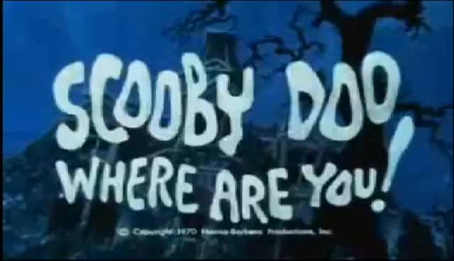 Watch and share Scooby Doo GIFs on Gfycat