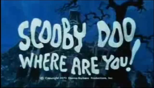 scooby doo, scooby doo GIFs