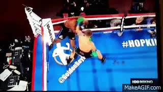 Watch Bernard Hopkins Gets Knocked Out Of Ring. GIF on Gfycat. Discover more related GIFs on Gfycat