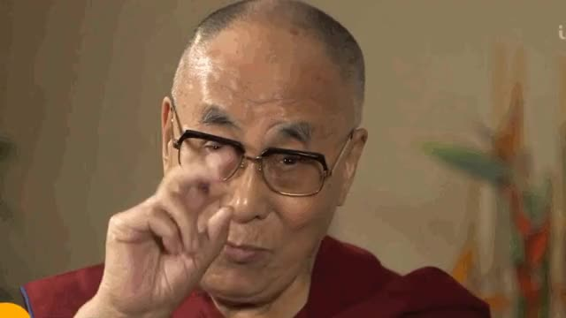 Watch Dalai Trump GIF by @d8sconz on Gfycat. Discover more related GIFs on Gfycat