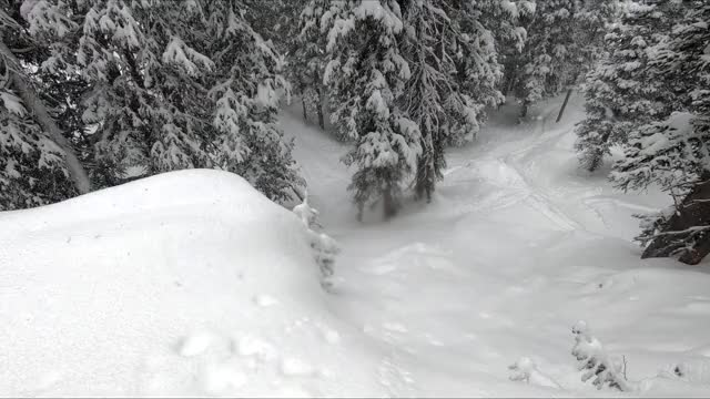 Watch this ski GIF by Irahi (@irahi) on Gfycat. Discover more ski, skiing, snow, snowing GIFs on Gfycat