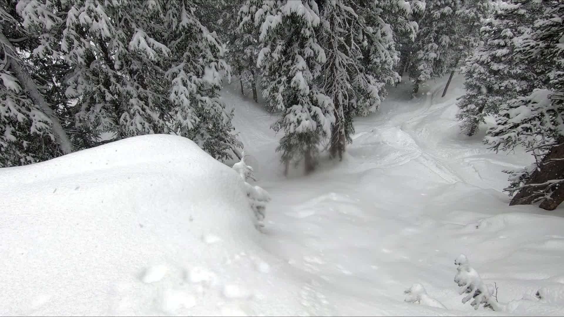 ski, skiing, snow, snowing,  GIFs
