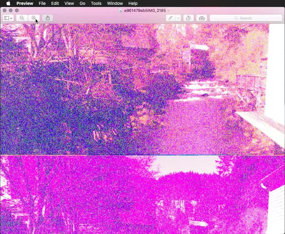 mildlyinteresting, e961479eb5IMG_2185 GIFs