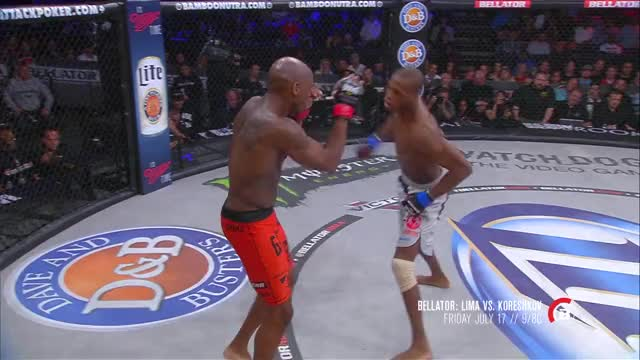 Watch and share Mixed Martial Arts GIFs and Fighter Feature GIFs on Gfycat