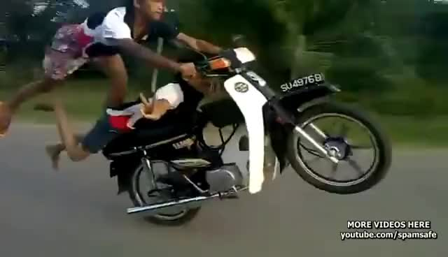Watch gila GIF on Gfycat. Discover more rider GIFs on Gfycat