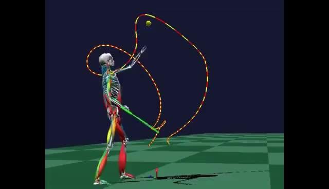 Watch and share Biomechanical Analysis GIFs on Gfycat