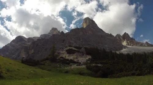 Watch and share Cortina GIFs by Ironia e Satira on Gfycat