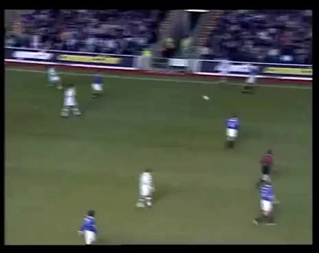 Watch and share Celtic GIFs on Gfycat