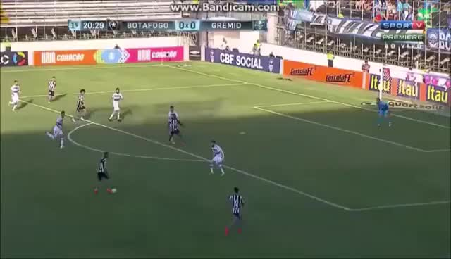 Watch and share Gol De Camilo Botafogo 2 X 0 Gremio GIFs on Gfycat