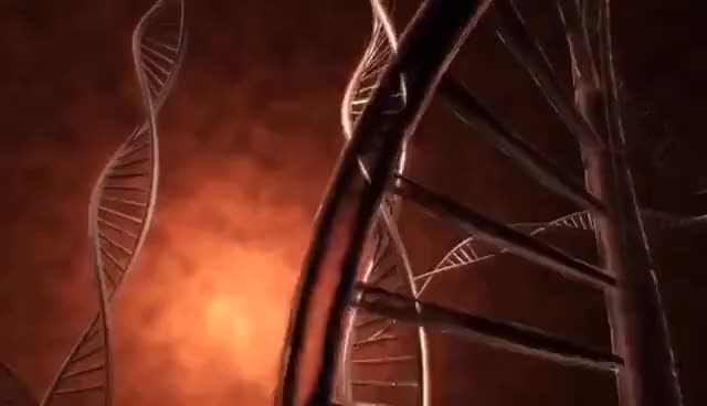 Watch and share DNA - What Is DNA? - Basics Of DNA GIFs by georgefreeman42 on Gfycat
