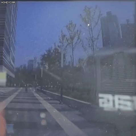 Watch and share 요즘 자라니 근황 GIFs on Gfycat