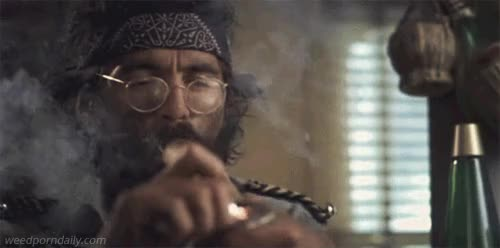 Watch this trending GIF by WeedPornDaily (@weedporndaily) on Gfycat. Discover more 420, buds, cannabis, cheech and chong, chong, film, ganja, green, herb, kush, marijuana, mary jane, medical marijuana, mmj, movies, pot, stoner, tommy chong, weed GIFs on Gfycat
