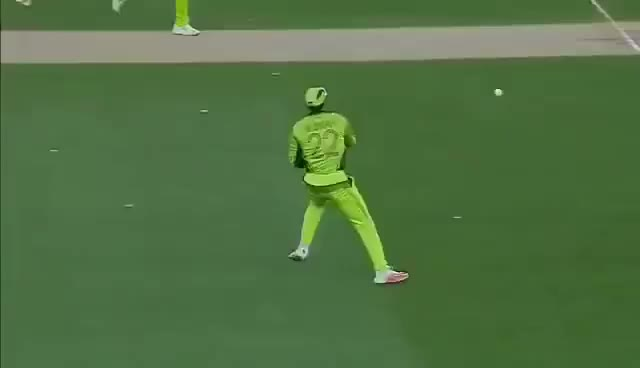 Watch and share Faf Du Plessis Destroys The Stumps In Auckland At CWC15 GIFs on Gfycat