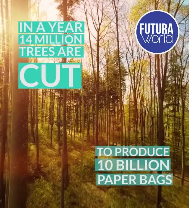 Watch and share Enviro Reusable Lunch Bag (FUTURA) GIFs by Nikkie Cinco Munda on Gfycat
