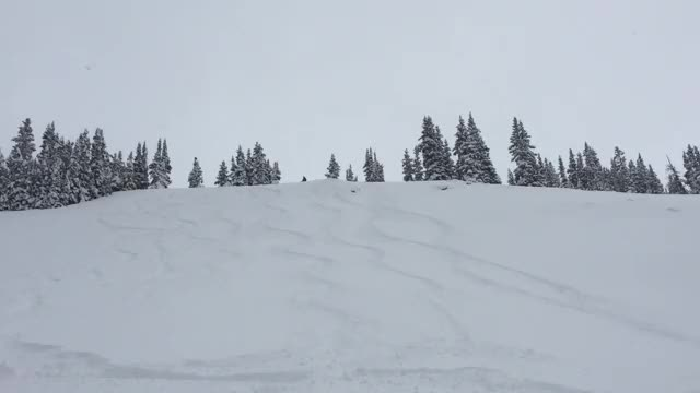 Watch and share Colorado GIFs and Skiing GIFs on Gfycat
