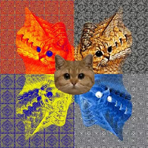 LSD Cats : gifs GIFs