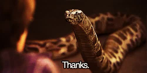 Watch and share Harry Potter Reptile House GIFs on Gfycat