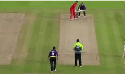 britishproblems, 🏏 cricket GIFs