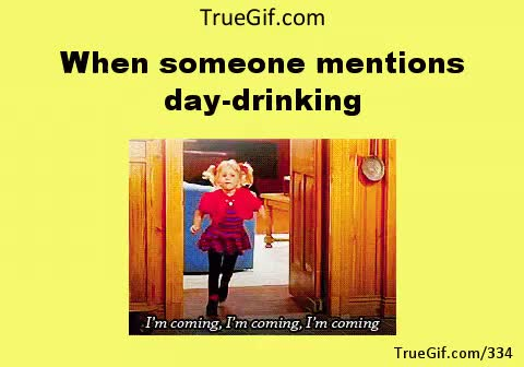 Watch mentions day drinking day drinking GIF on Gfycat. Discover more related GIFs on Gfycat