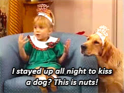 happy new year, holiday, new year, new years, nuts, this is nuts, New Year GIFs