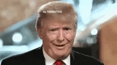 Watch Alternative Facts GIF on Gfycat. Discover more donald trump GIFs on Gfycat