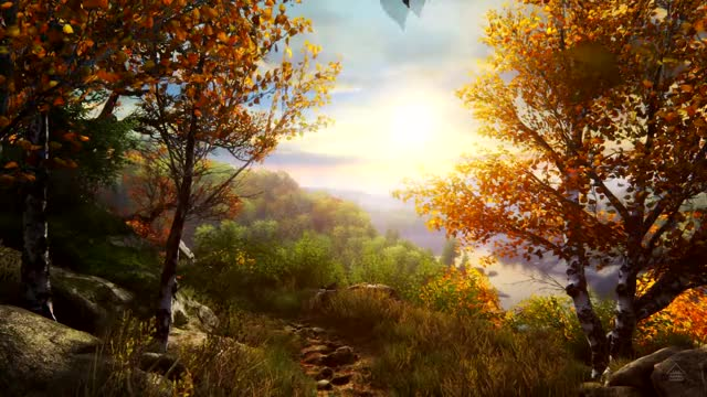 Watch and share Fall Ambient Sounds GIFs and Autumn Leaves GIFs on Gfycat