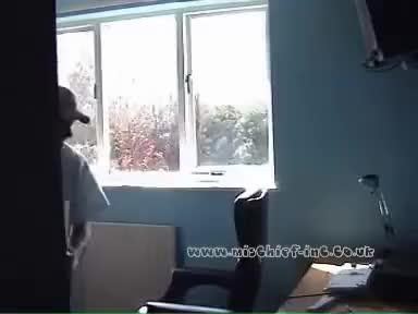 Watch and share Always Wanted To Throw Your Computer Out The Window? I Did ! Bad Day At Office... GIFs on Gfycat