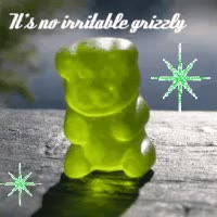 Watch and share No Grizzly GIFs on Gfycat