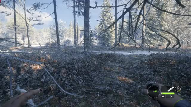 Watch and share Thehunter GIFs and Cotw GIFs by darthbiggles on Gfycat