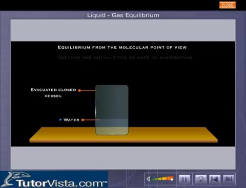 Watch and share Liquid Gas Equilibrium GIFs on Gfycat