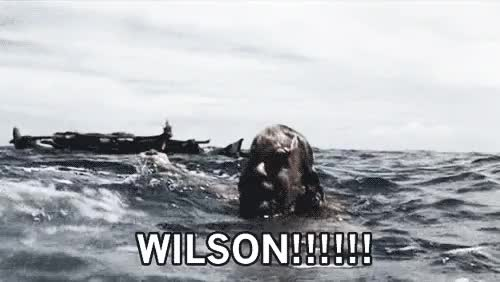 Watch and share Wilson Cast Away GIFs on Gfycat