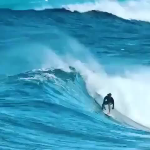 Watch and share Surfer Landing His Jump GIFs by Z3F on Gfycat