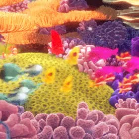 Watch and share Finding Nemo Gif GIFs and Challenge GIFs on Gfycat