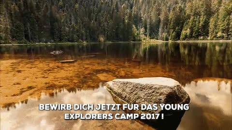 naturegifs, YEP CAMP 2017 GIFs