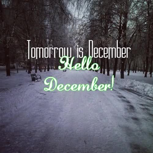 Watch and share December Quotes GIFs and Hello December GIFs on Gfycat