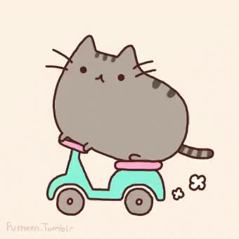 Watch Scooter Pusheen GIF on Gfycat. Discover more related GIFs on Gfycat