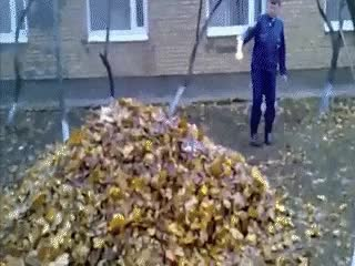 Watch and share These Leaves Will Burn So Much Faster If I Soak Them With Lighter Fluid First! (reddit) GIFs on Gfycat
