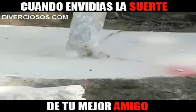 Watch and share Cuando Envidias La Suerte De Tu Mejor Amigo (pichy Boys) GIFs on Gfycat