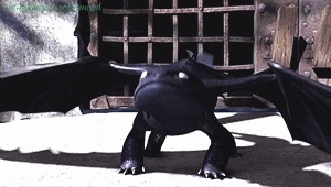dragon on flower, dragons, gif, how to train your dragon, httyd, my gif, my httyd gif, my post, riders of berk, rob, toothless, sneezing Toothless GIFs