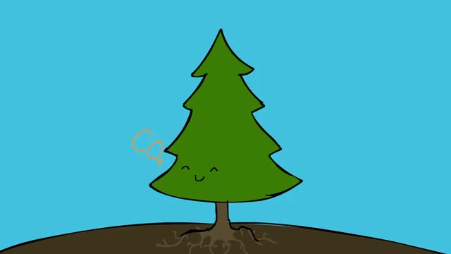 Watch and share End Of Ze World GIFs and Trees GIFs by horseysuprise on Gfycat