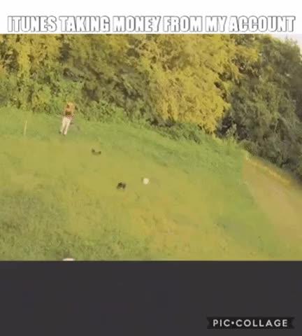Watch and share Running Bro GIFs on Gfycat