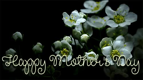 Watch and share Happy Mothers Day Greetings Animated Gif GIFs on Gfycat