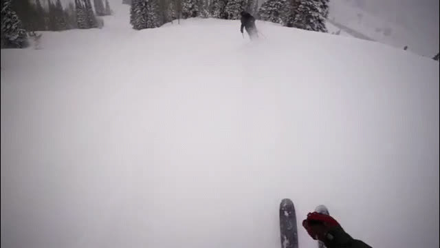 maybemaybemaybe, nononono, skiing, skiing GIFs