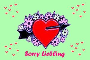 Entschuldigung sorry sorryliebling Entschuldigung - GB HELD GIFs