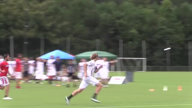 Watch and share Ultimate Frisbee GIFs and Highlight Reel GIFs by American Ultimate Disc League on Gfycat