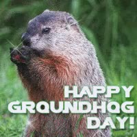 Watch and share Groundhog Day GIFs on Gfycat
